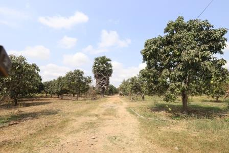 Khsach Kandal | Development Land for Sale Close to Kandal Airport