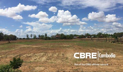 Land For Sale in Moung Ressey, Battambang Province.